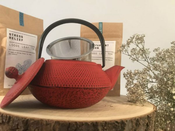 tenshi red cast iron teapot gift set